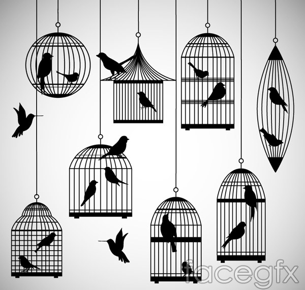 Bird cages and bird silhouettes vector
