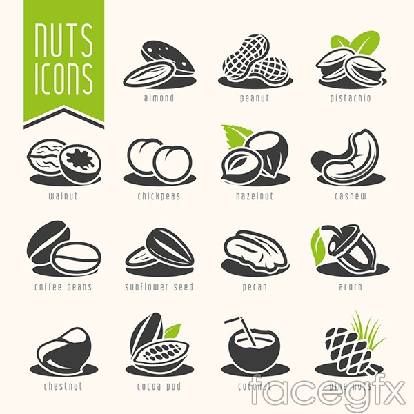 Fashion nuts dried fruit vector