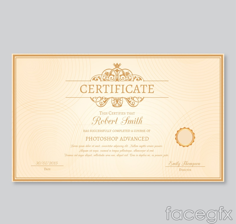 Sophisticated certificate design vector