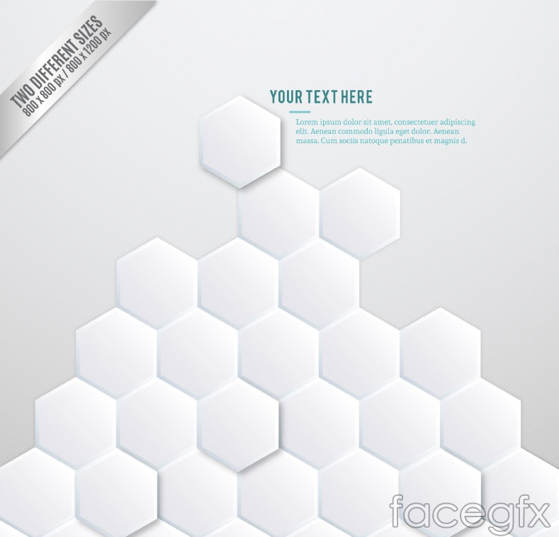 White Hexagon combination background vector