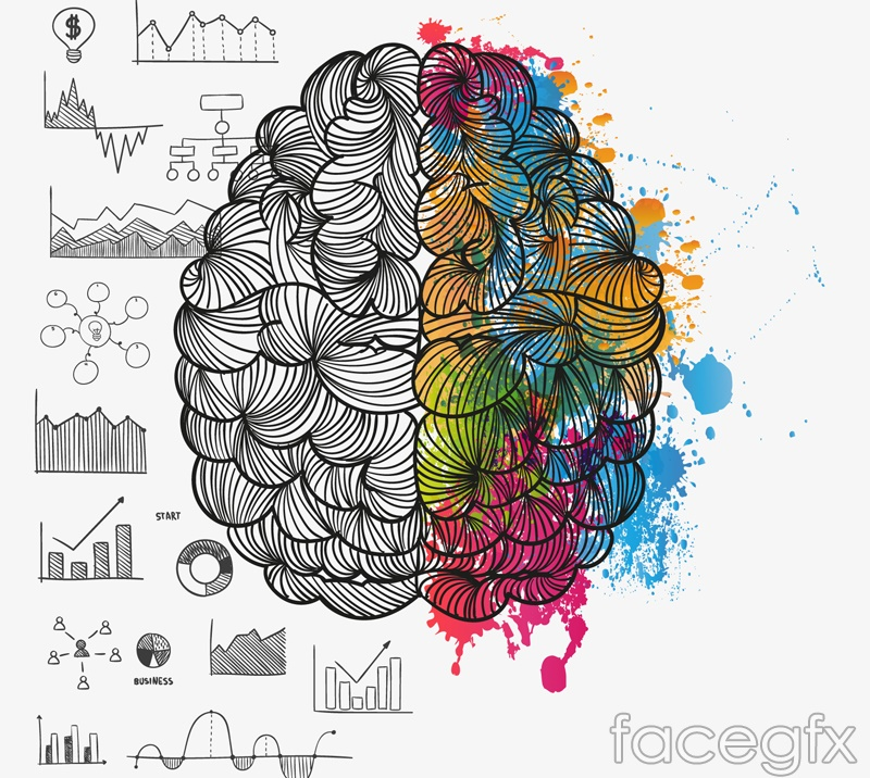 Painted brain design vector