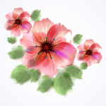 Hand-painted watercolor flowers vector