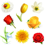Beautiful realistic flowers vector