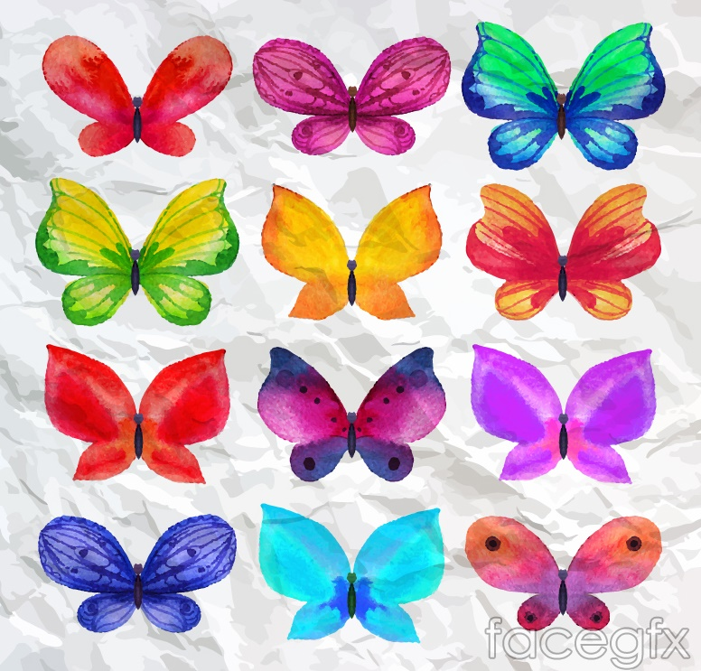 12 watercolor Butterfly design vector