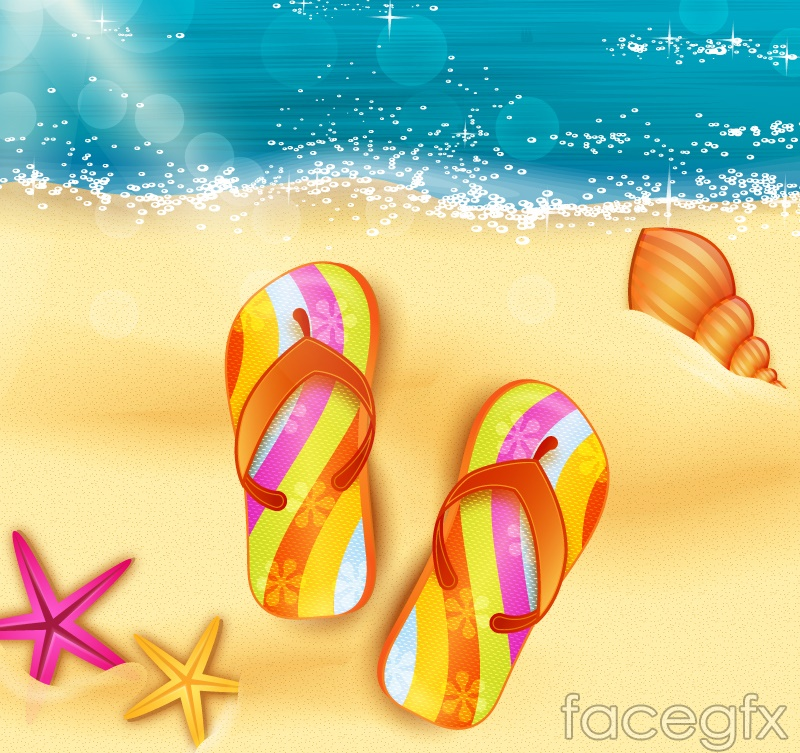 Beautiful beach and beach slippers vector graphics