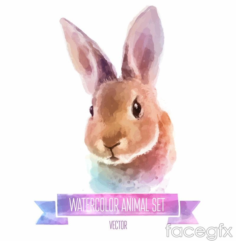 Watercolor painting rabbit head vector