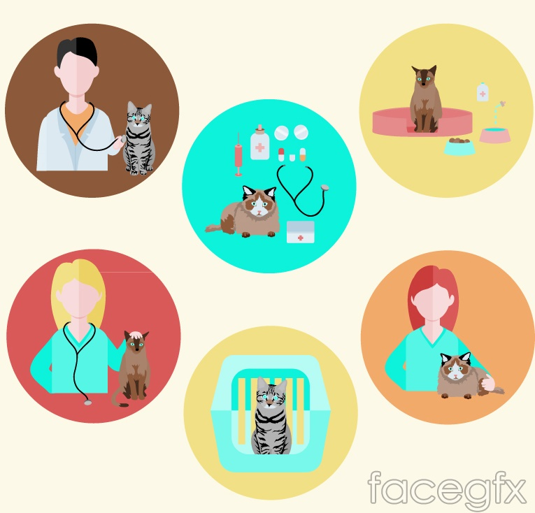 6 cat and vet icon vector