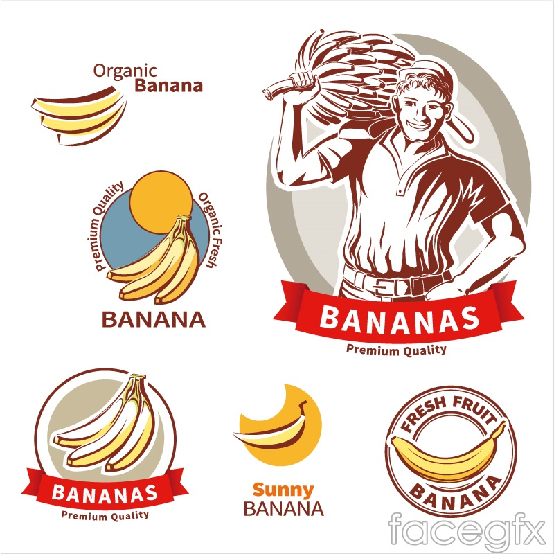 6 quality of banana label vector