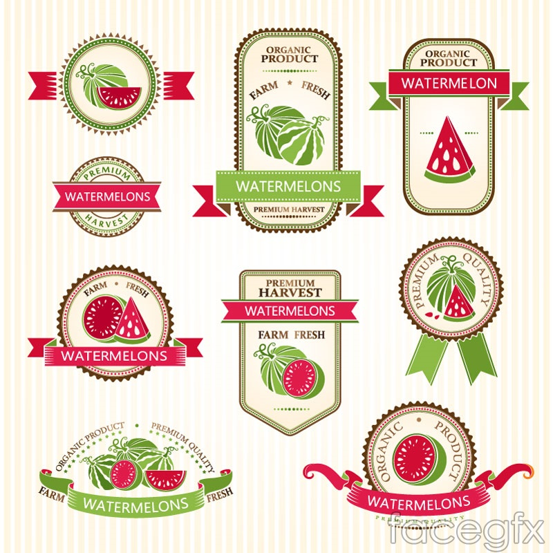 9 creative watermelon tag vector