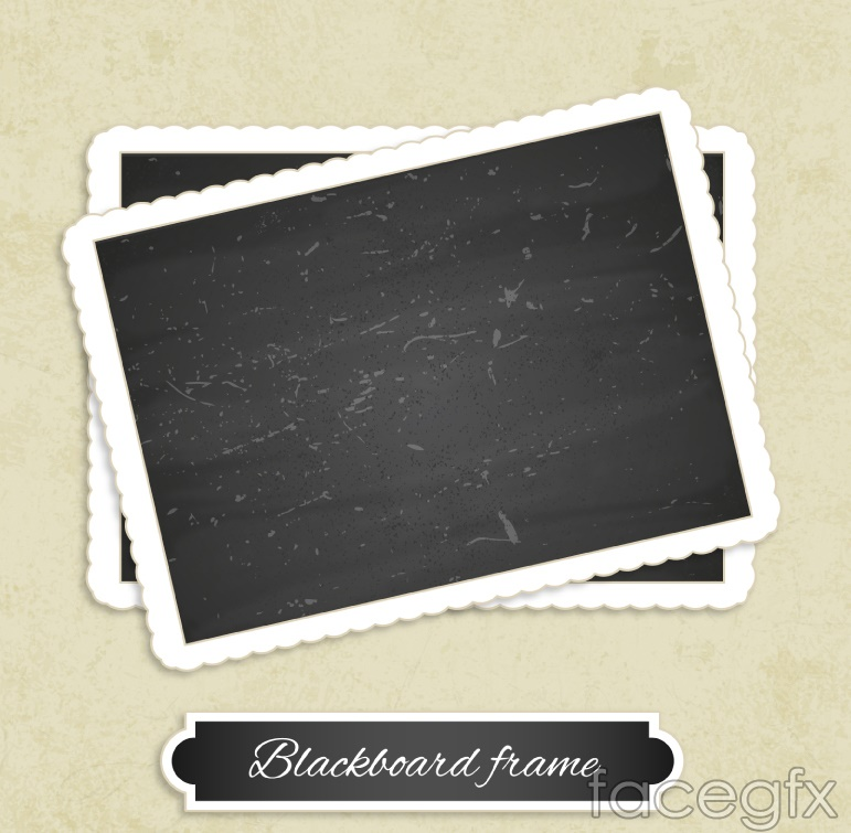 Blank photo design vector