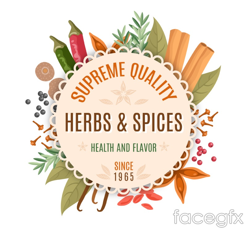 Creative spice decorative labels vector