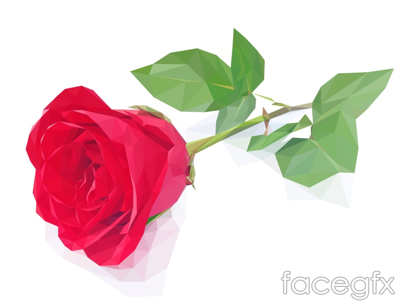 Single red rose flowers vector