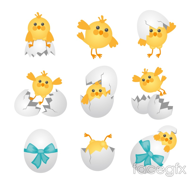 9 cartoon chick and egg shell vector