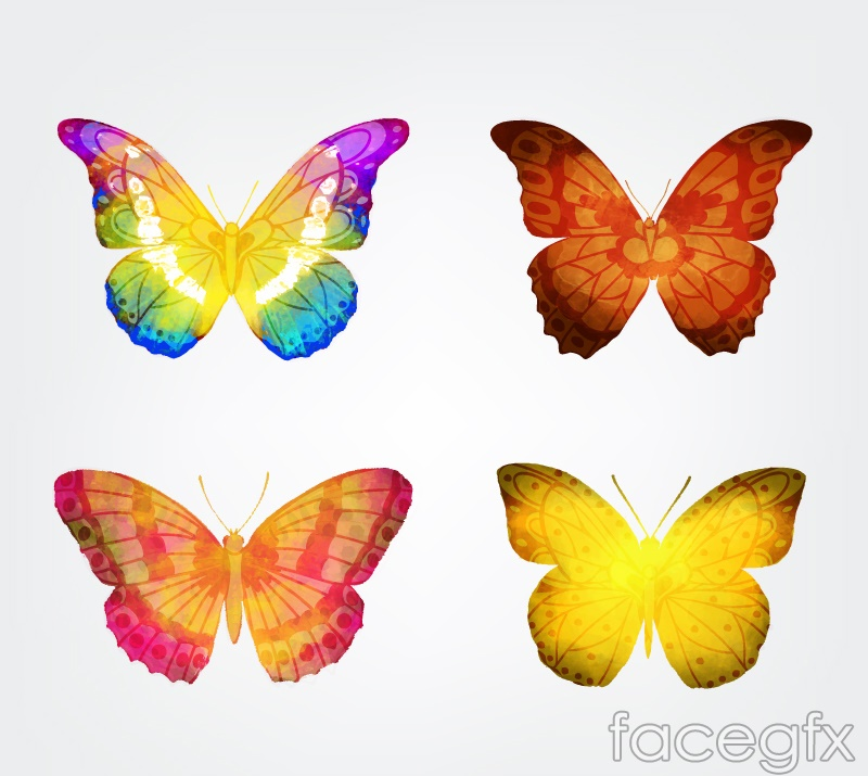4 watercolor Butterfly vector
