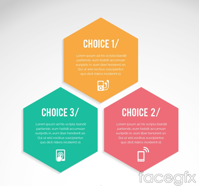Color Hexagon infographic vector