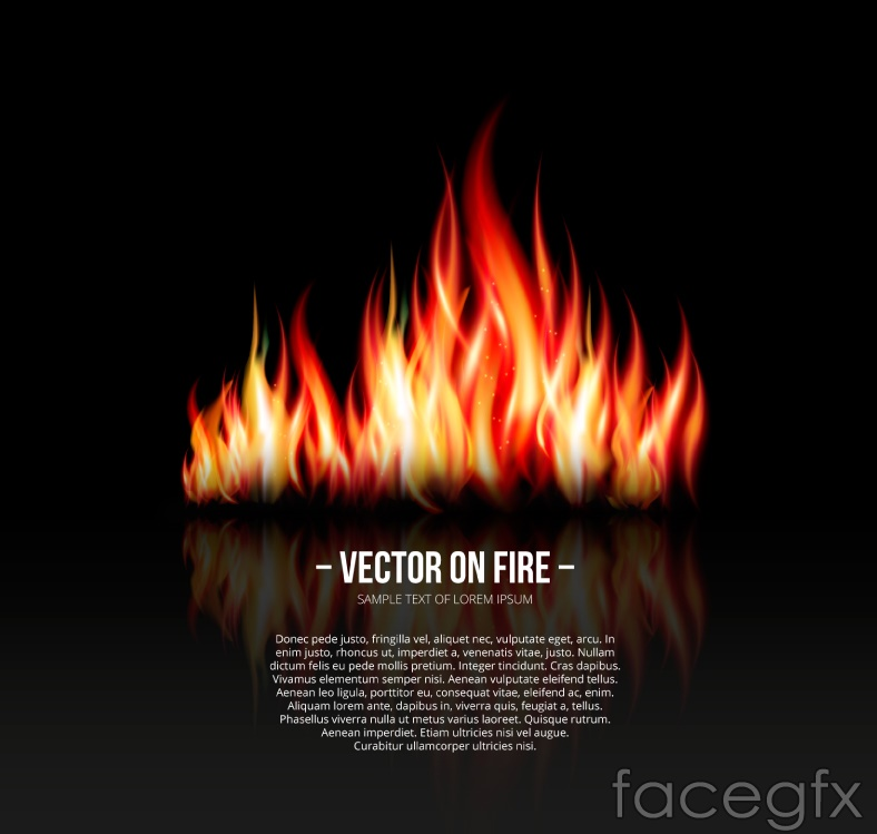 Realistic flame design vector