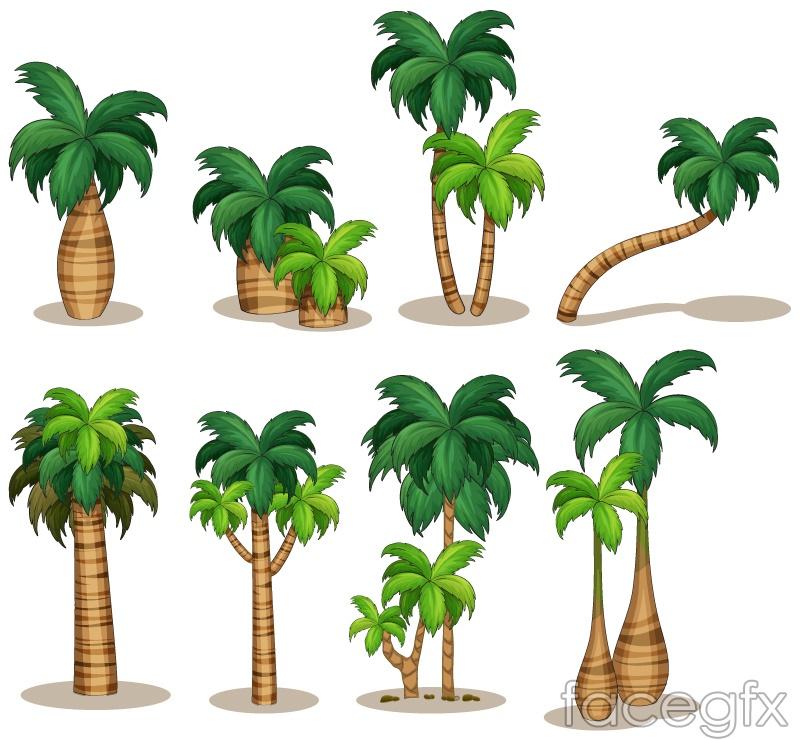 8 beautiful coconut palm vector