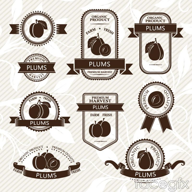 9 creative plum label vector