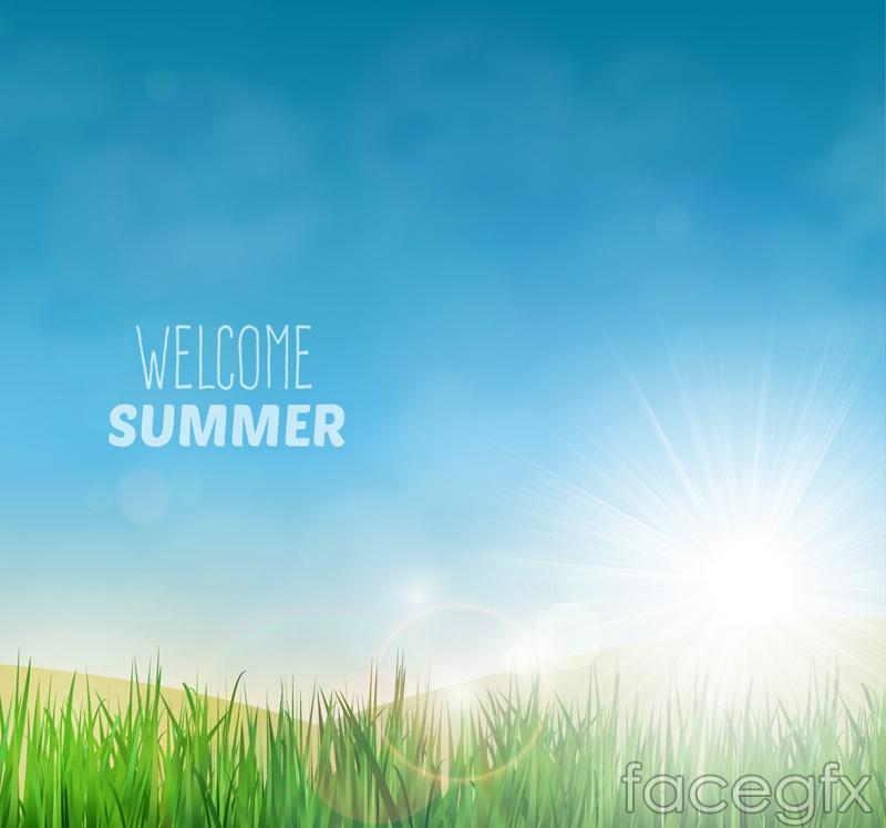 Summer Sun grass vector