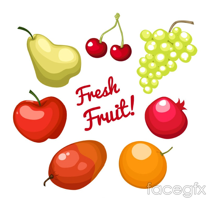 7 delicious fruit vector