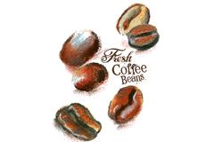 Beautiful painted coffee vector