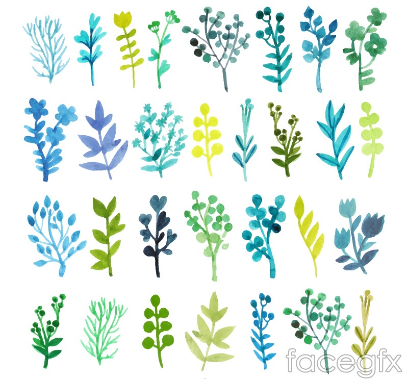 Watercolor 30 branches and flowers vector
