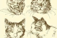 4 hand-painted Cat Head vector