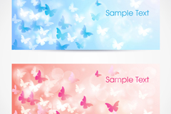 2 color Butterfly banner vector