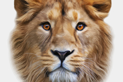 Lifelike Lions head design vector