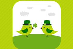 Green Bird lovers vector