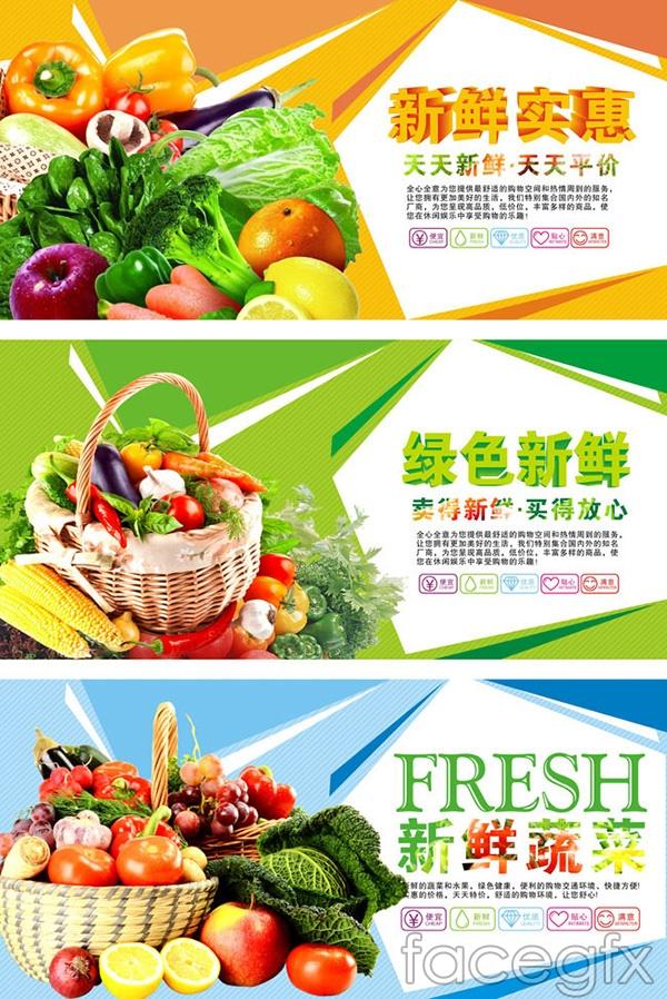 Fresh vegetables in the supermarket display boards vector