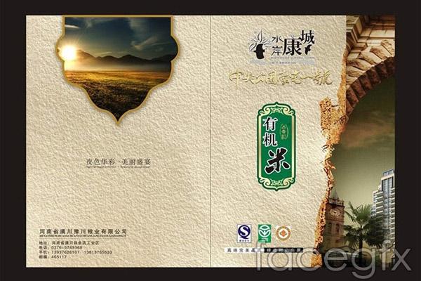 Corporate Promotional album cover vector