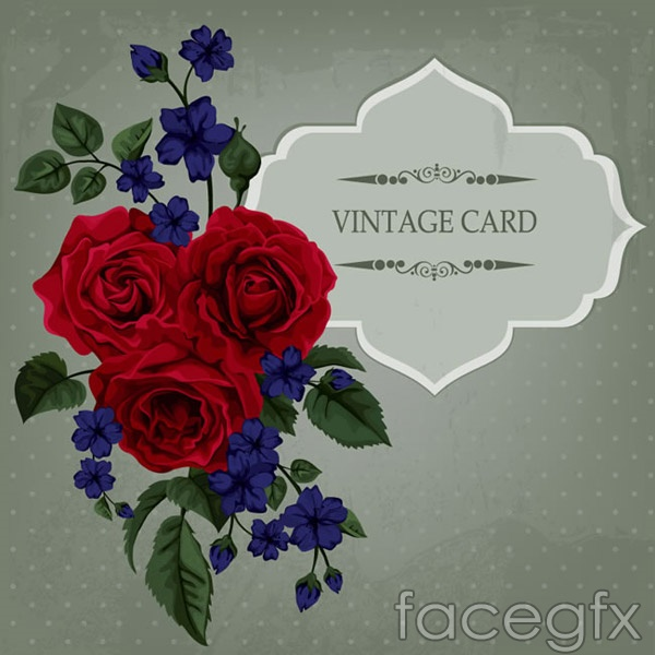 Bouquets of roses decorated cards vector
