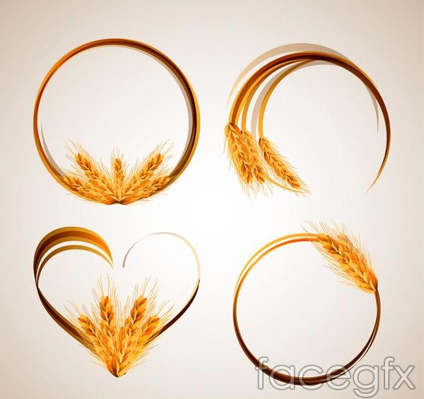 Golden Wheat ear loop vector