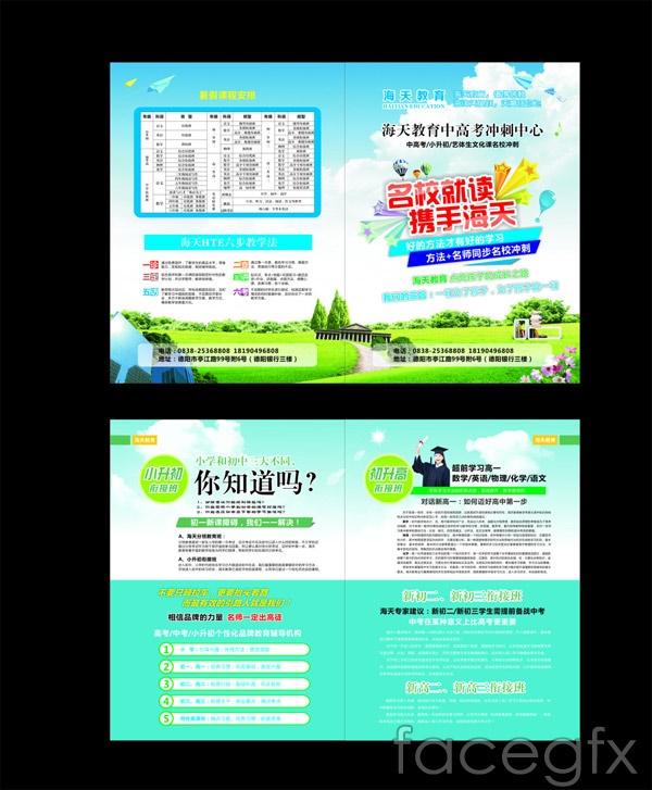 DM education flyer vector