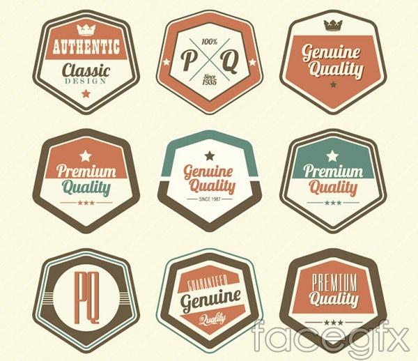 Hexagon quality label vector