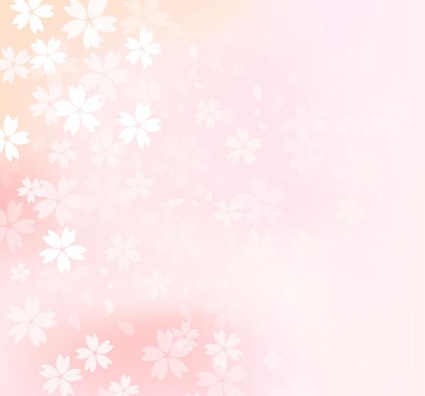 James cherry blossom flower background vector