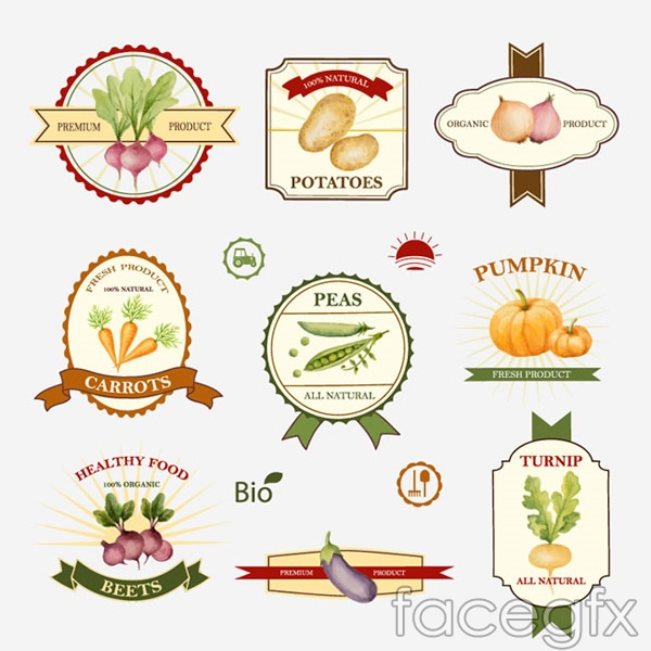 Organic vegetable labels vector