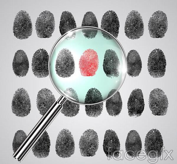 Magnifying glasses and fingerprint vector