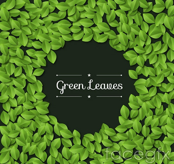 Green leaf border vector