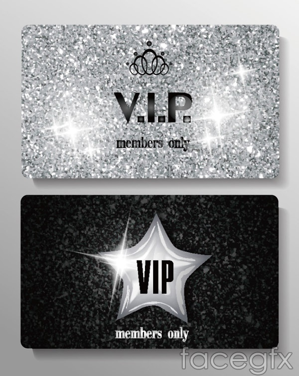 VIP silver card design vector