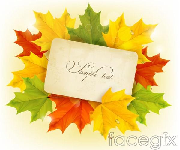 Card on autumn leaves vectors