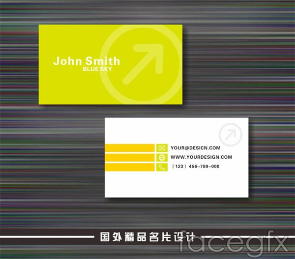 Stylish compact business cards vector