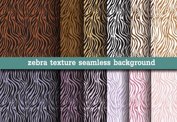 Color Zebra backgrounds vector