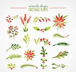 Watercolor Christmas plant vector