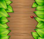 Leaves and wood grain background vector